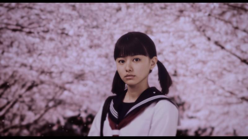 【画像】映画『桜ノ雨』メインカット