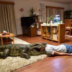 【画像】映画『家に帰ると妻が必ず死んだふりをしています。』メインカット1