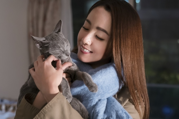 【画像】映画『猫は抱くもの』メインカット