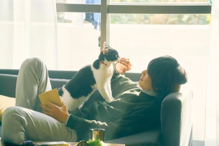 【画像】映画『旅猫リポート』場面カット1