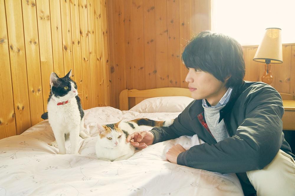 【画像】映画『旅猫リポート』場面カット7
